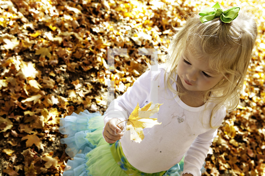 Girl holding a leaf in the park