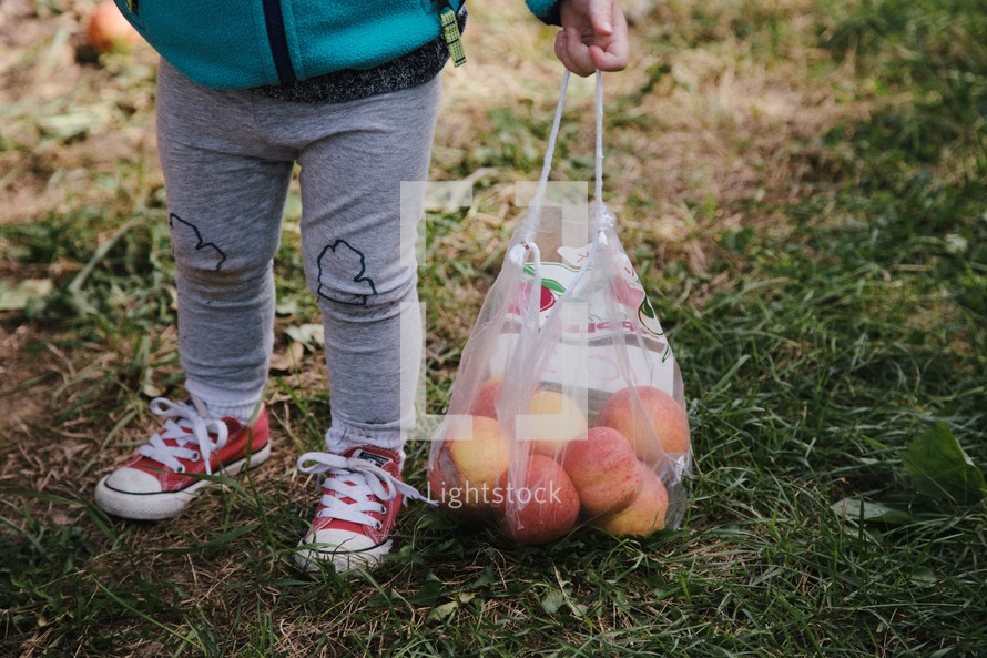 legs of a toddler girl carrying a bag of apples