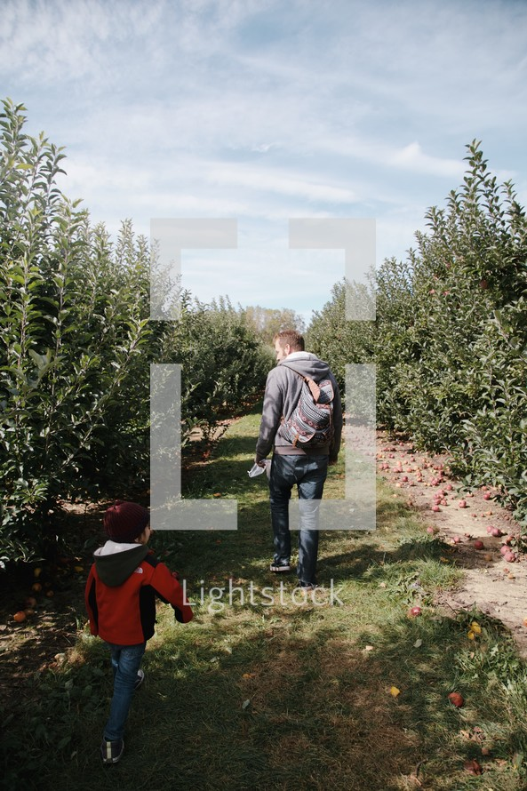 father and son walking in an apple orchard