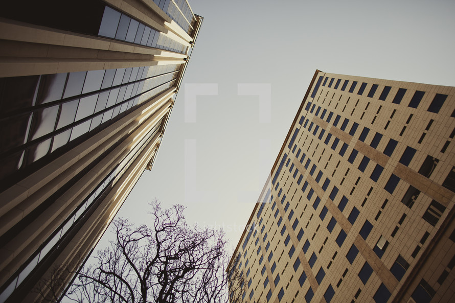 Buildings rise high into the sky