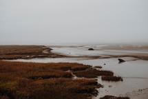 wet sand along a shore