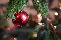 A red Christmas ball hung on a Christmas tree bough.