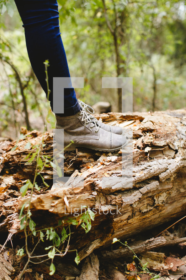 legs, jeans, boots, standing, outdoors, log, fallen tree