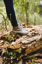 legs, jeans, boots, standing, outdoors, log, fallen tree