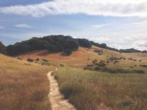 A path through a grassy field.