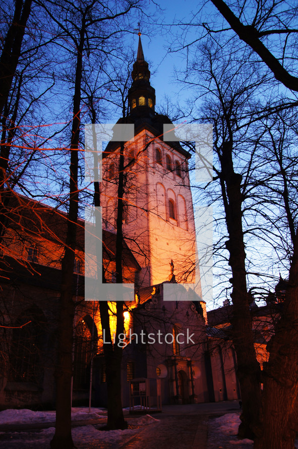 A bell tower shrouded in the trees at sunset