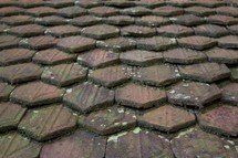 mossy tile roof
