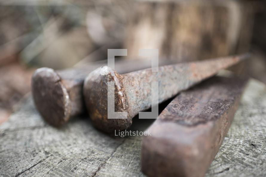 rusty railroad spikes