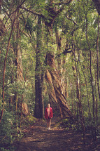 a woman standing on a trail in a rainforest