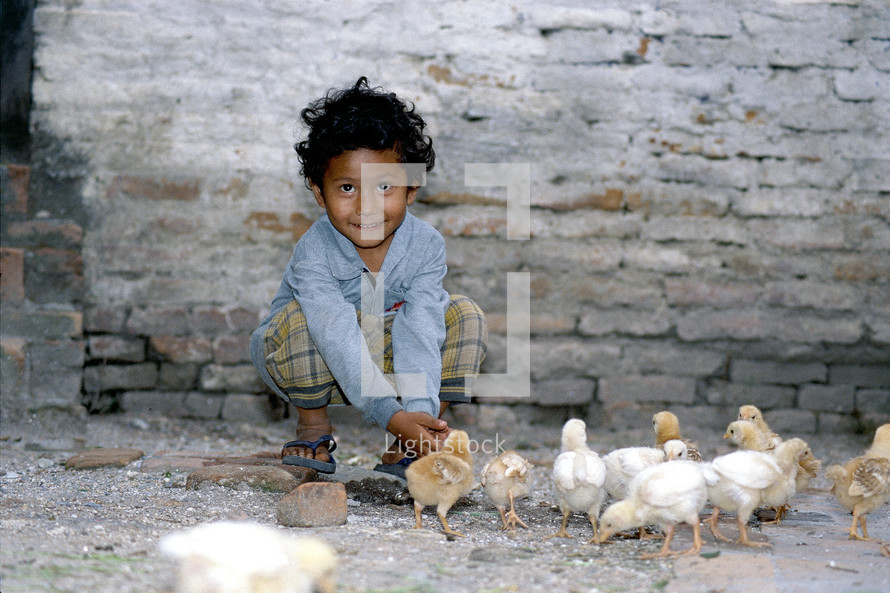 Little boy playing with baby chicks on a dusty pavement