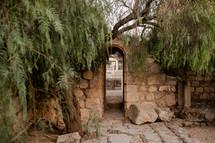 garden in Israel