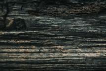 wood grains background