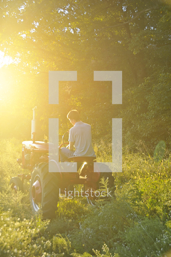 Man driving tractor in grass field