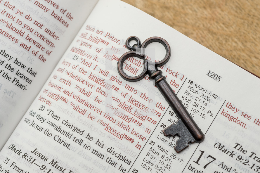 And I will give unto thee the keys of the kingdom of heaven