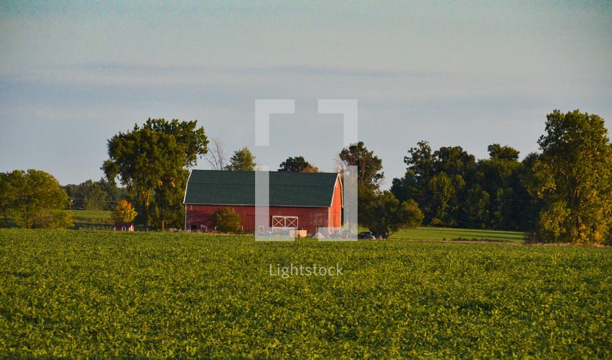 Red farmhouse in green field