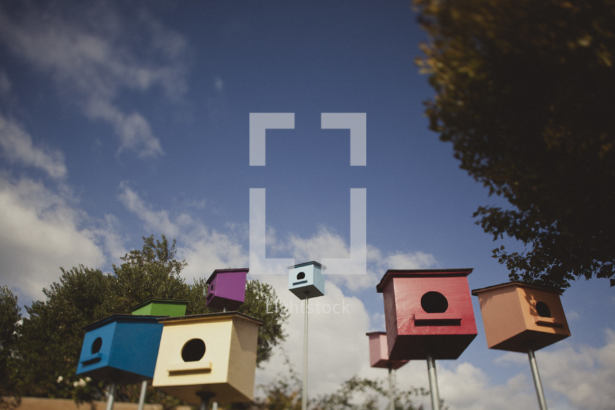 Different colored bird houses
