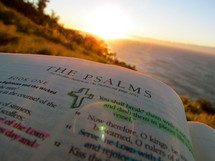 The Psalms on a beach