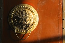 a brass dragon door knob