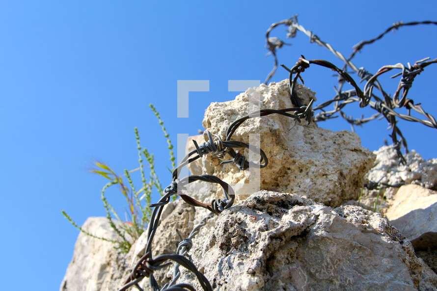 barbed wire on rock