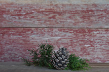 greenery on a red wood background