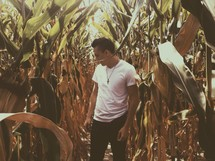 man standing in a corn field