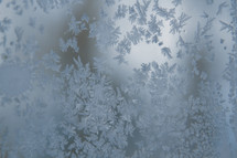 Ice crystals on a window.