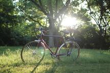 bike at a park
