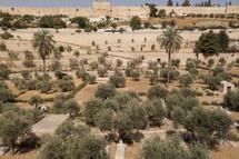 landscape and walls in Jerusalem