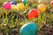 Easter eggs in grass