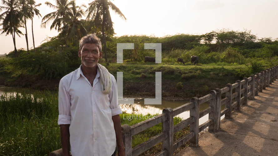 a man standing on a bridge near grazing buffaloes