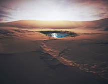 A small oasis in the middle of the sandy desert