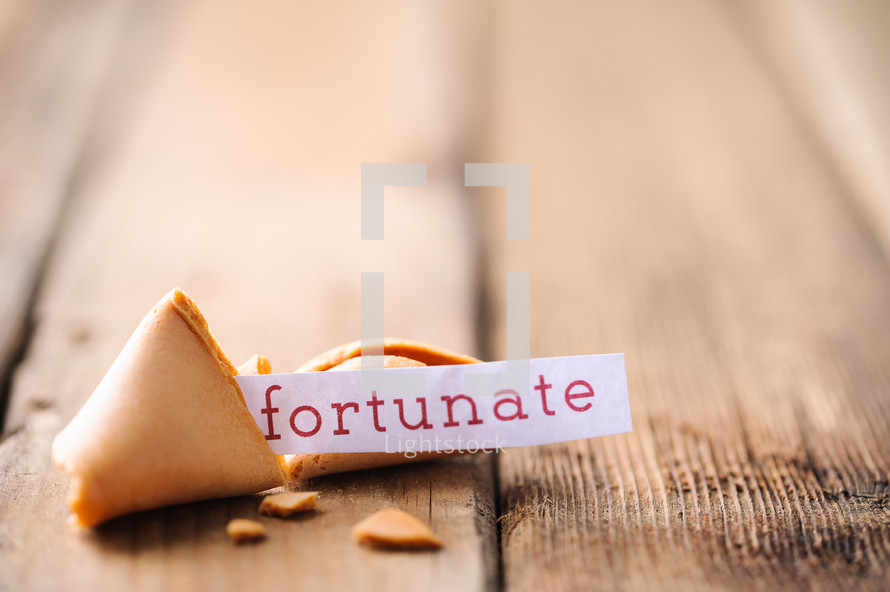 fortune cookie - fortunate