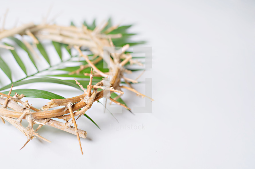 Palm fronds, Palm Sunday, crown of thorns, Good Friday, holy week