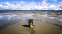 old wooden piling in wet sand