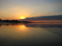 tide washing onto a marsh shore