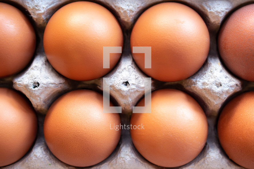 eggs in egg cartons