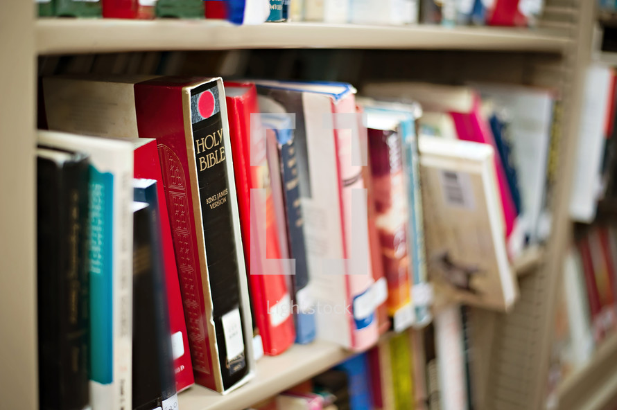Shelf of library books.