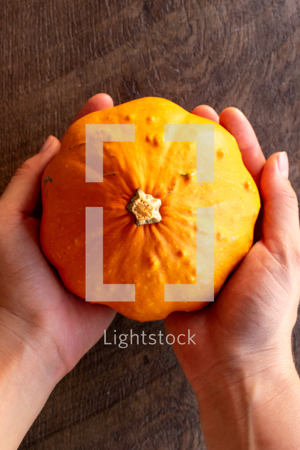 cupped hands with pumpkins