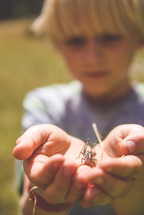 boy child holding a bug