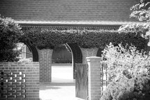 ivy over arched walkway