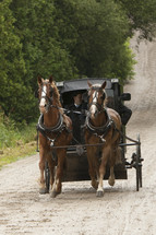 Horses pulling a carriage on a dirt road.