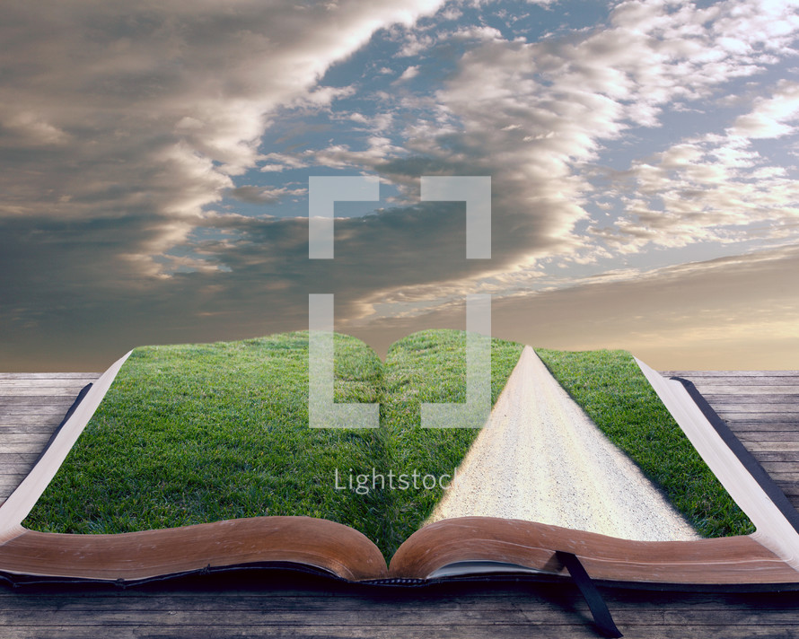 Green grass inside Bible.
