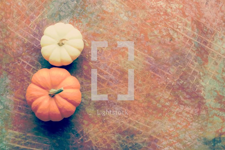 pumpkins on rustic background