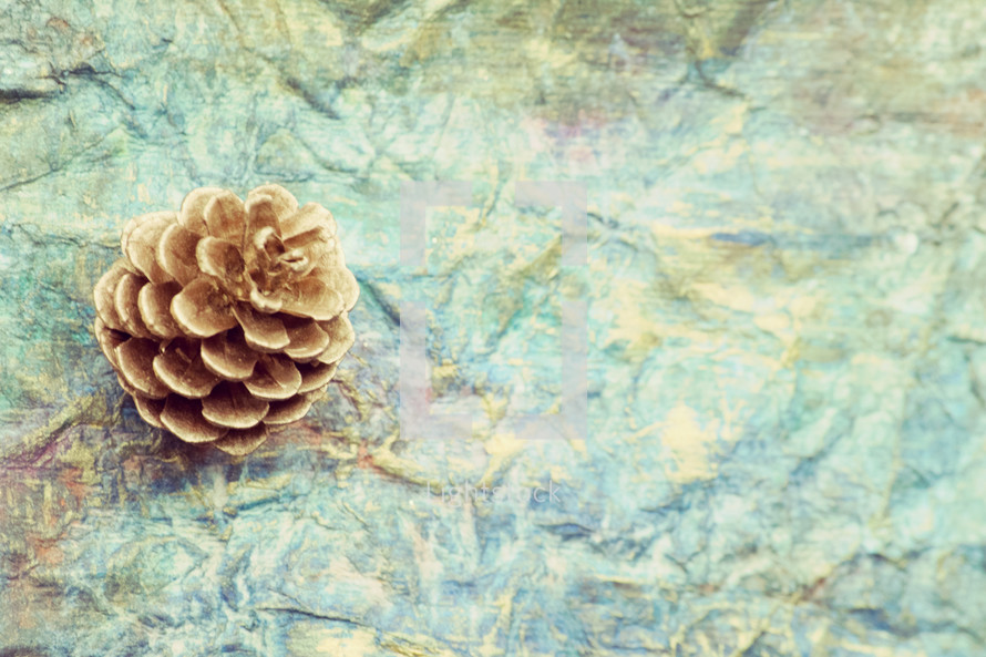 pinecone on blue crinkled background