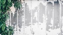 weathers white wall
