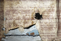 peeling wallpaper on rusty metal