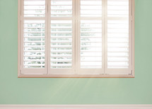 shutters in a window