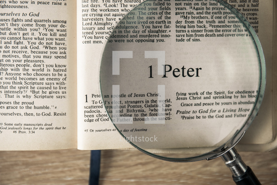 1 Peter under a magnifying glass