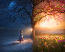 A little girl looks through a knot hole in tree which reveals a beautiful summer meadow