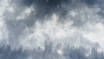 falling snow in a winter forest